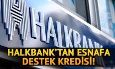 Halkbank Esnaf Kredisi (2020) Devam Ediyor