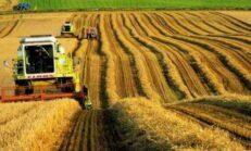 Çiftçi Kredisi Veren Bankalar ve Verilme Şartları